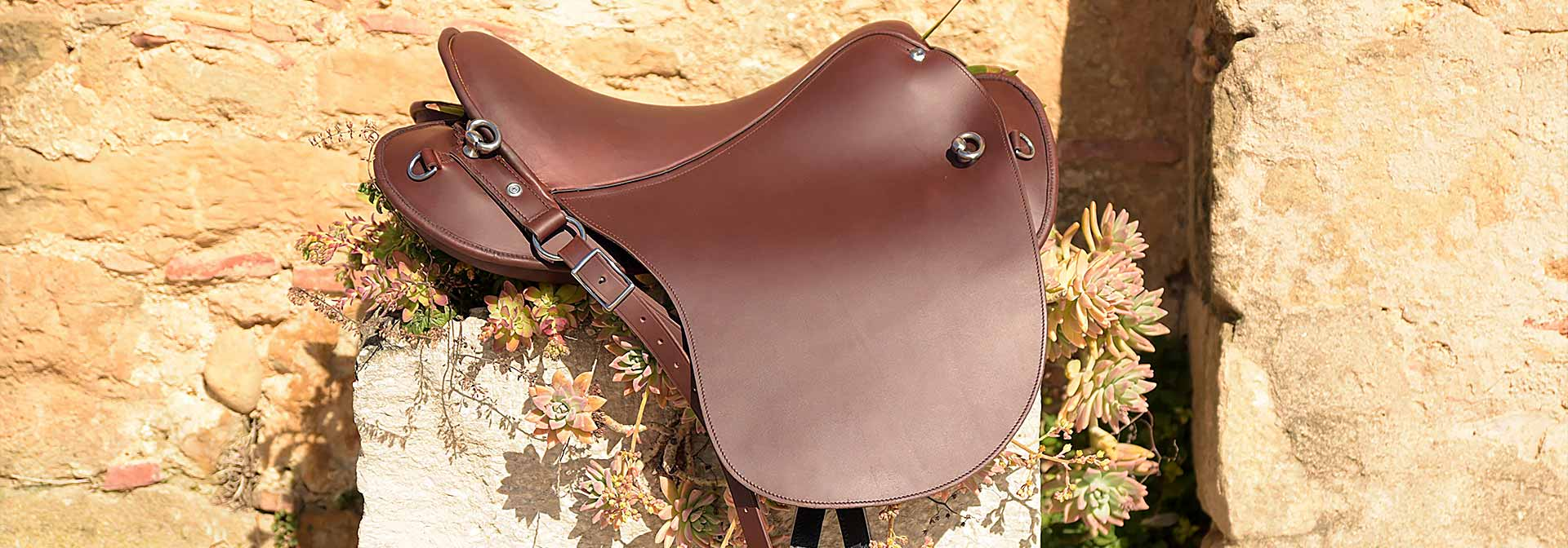 Top saddle Spain Germany