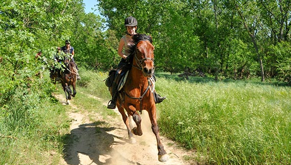 horse riding holidays in spain panorama trails