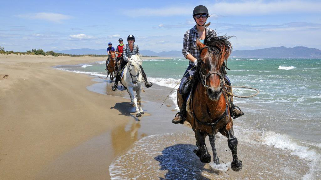 Catalan Coast & Spanish Horses 08