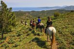 Catalan Coast & Spanish Horses 07