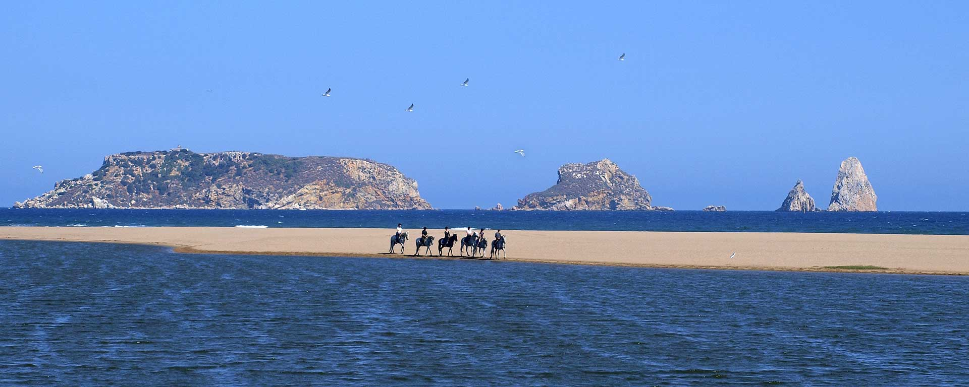 Pure Horseback Riding in Spain