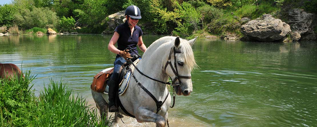 Trail riding on PRE Andalusians