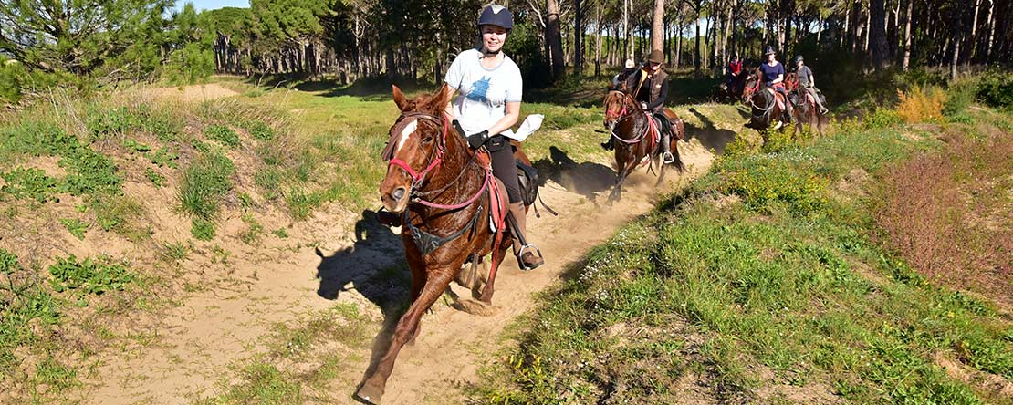 Relaxing canter on Spanish horses