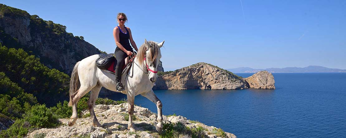 Great panorama Mediterranean Sea Spanish horses