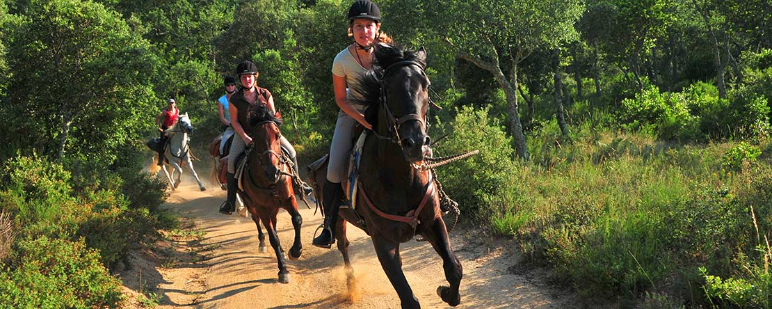 Catalonian cork oak forests on horseback