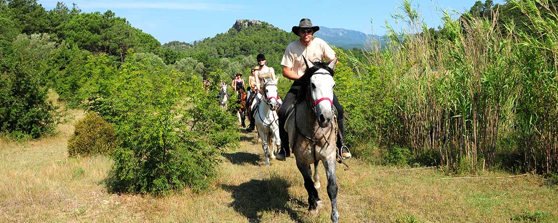 Canter across Catalonian plains