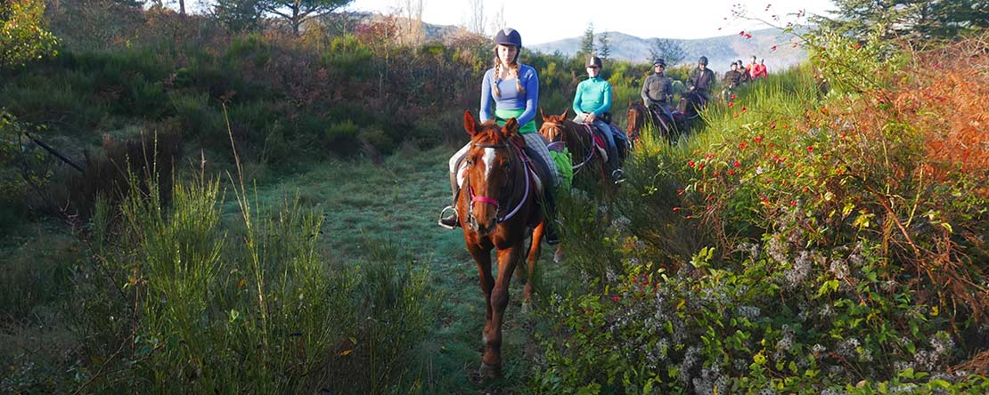 Discover remote places on horseback Spain