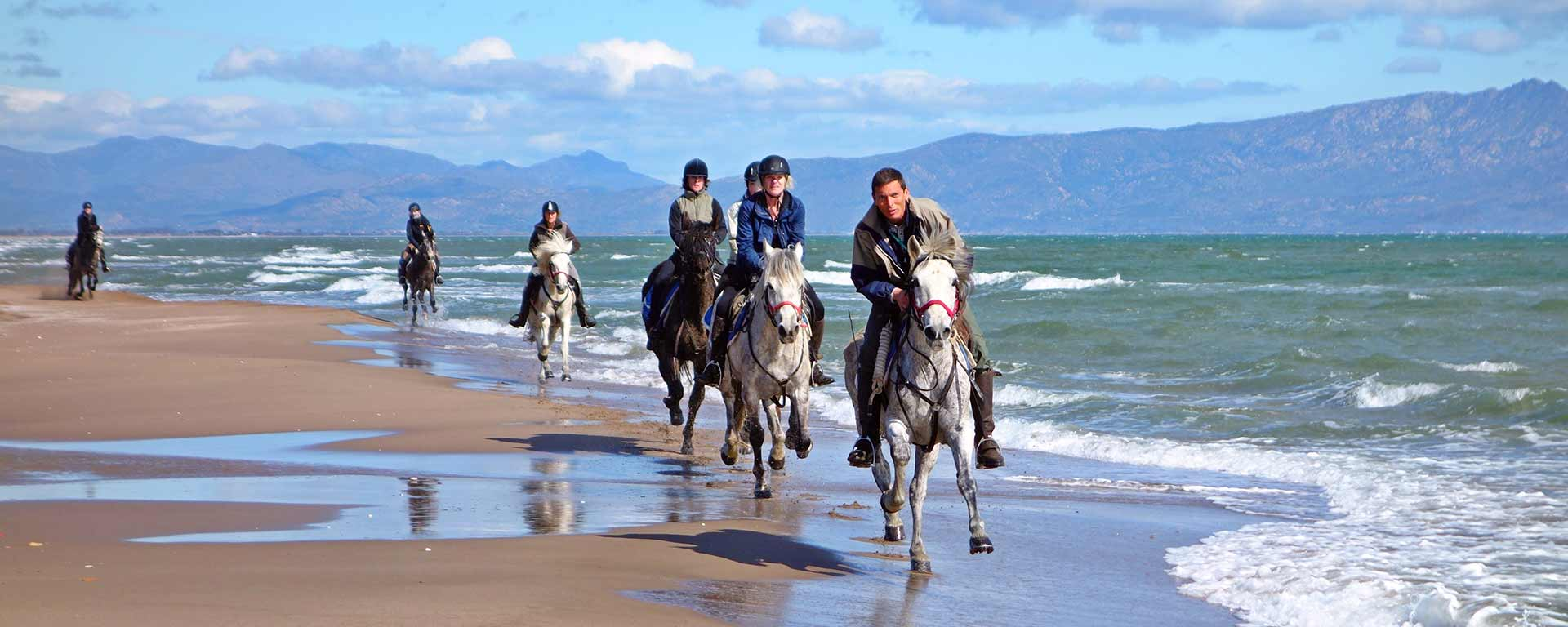 Horse riding on the beach and by the sea
