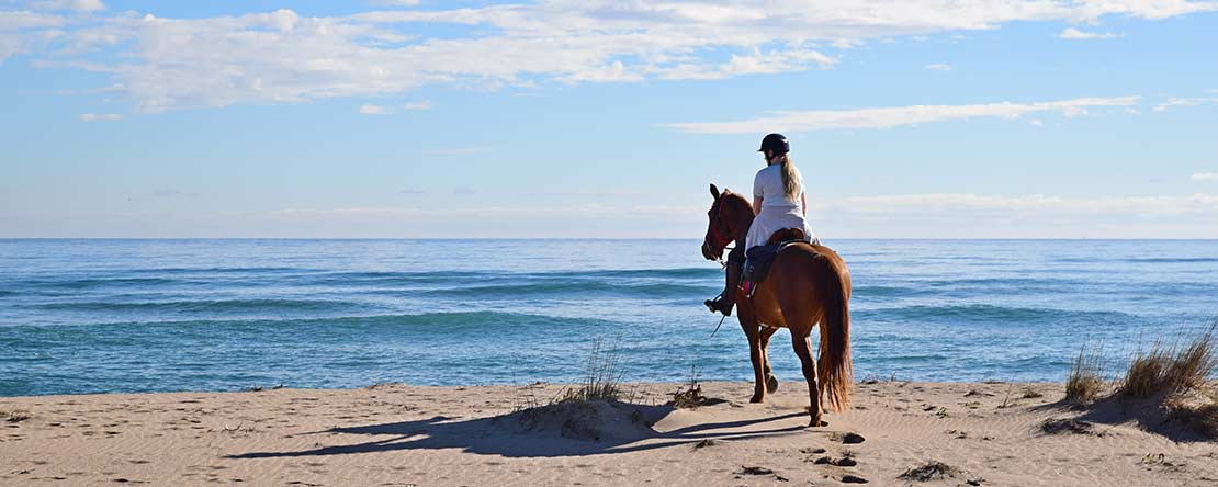 Relaxation on horseback Spain