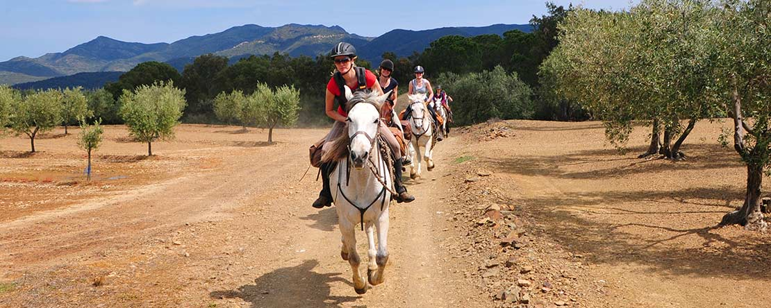 Canter horse riding vacation Spain