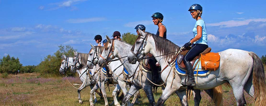 Horse riding Spain great company