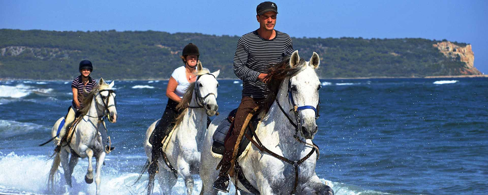 Exciting horse riding by the sea