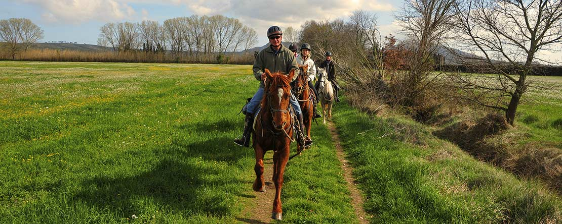 Discover northern Spain on horseback