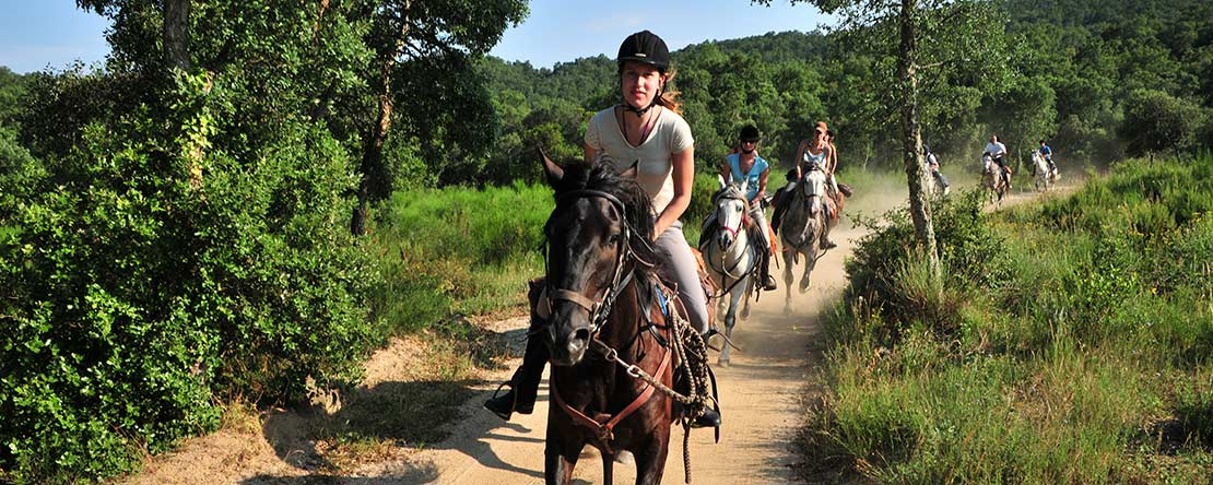 Enjoy speedy riding holiday north Spain