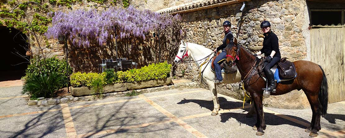 Natural stone villages Spanish horses Catalonia