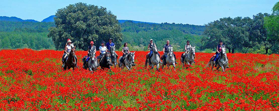 Exceptional trail ride across northern Spain