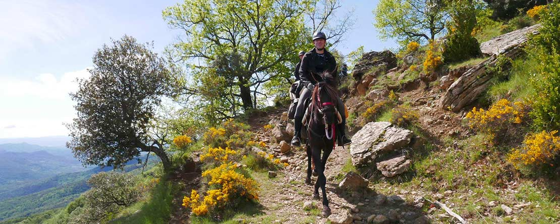 Catalonian Pyrenees on horseback