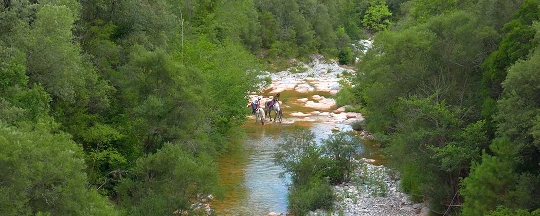 Horse riding holiday Pyrenees