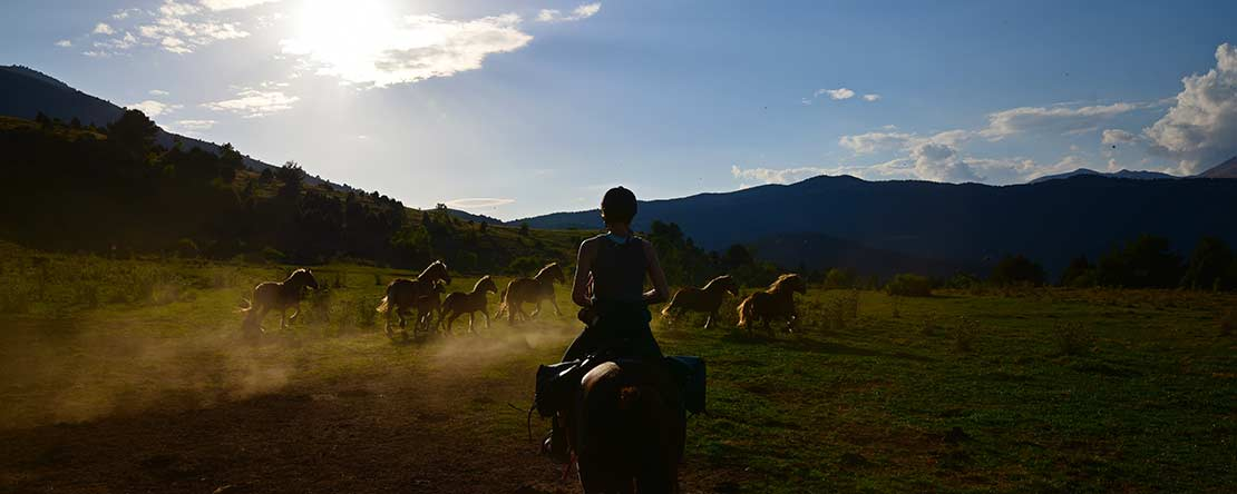 Experience wild unspoilt Europe on horseback