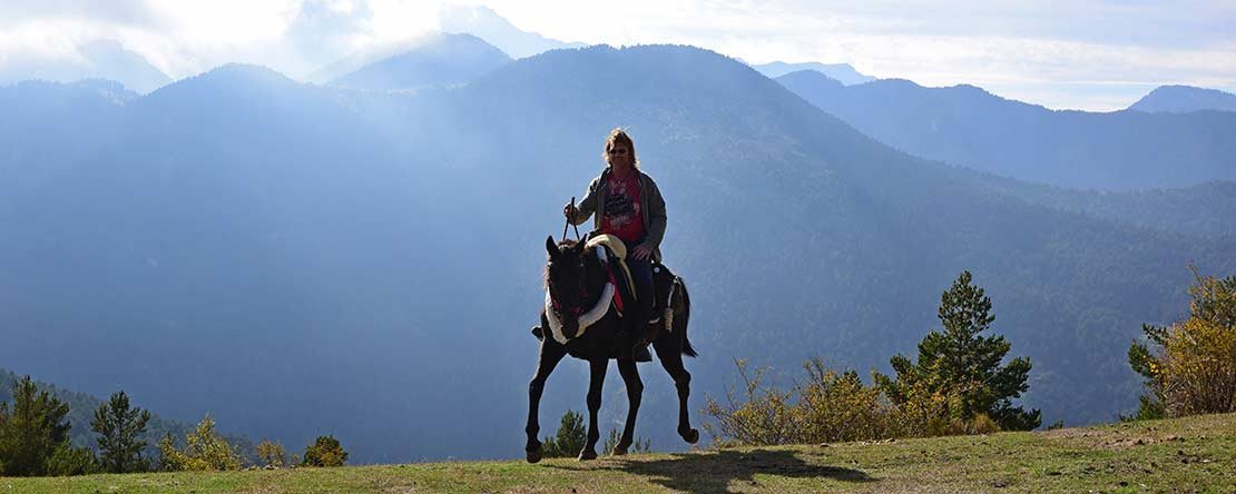 Discover Pyrenees pack trail on horseback