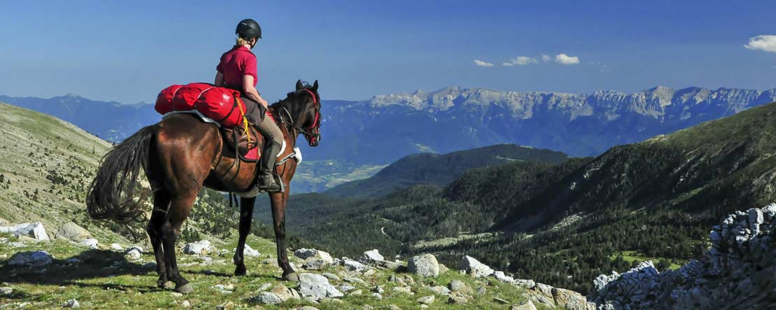 Lonely places amazing panorama Spanish horses