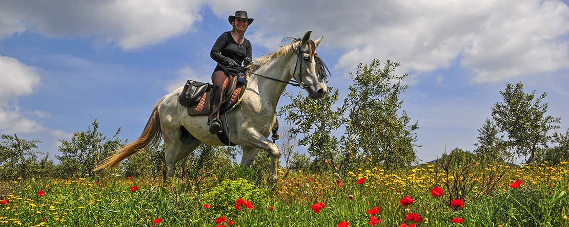 Horse riding vacation northern Spain