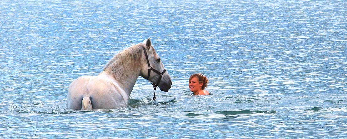 Unforgettable horse riding break Catalonia