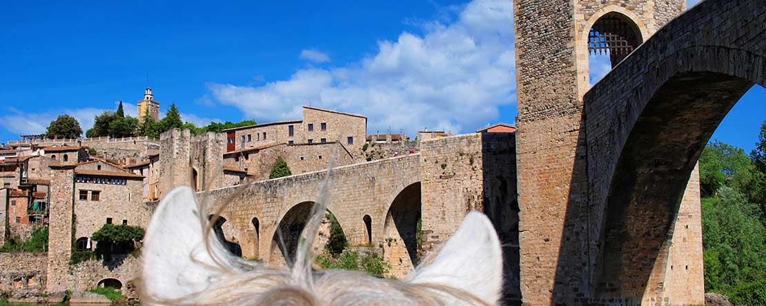 Horse riding vacation Catalonia