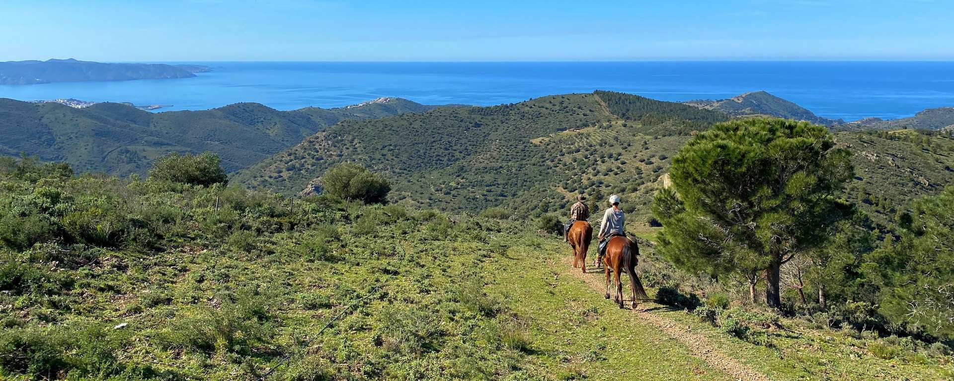 Trail riding by the sea – enjoy the freedom of independent riding!